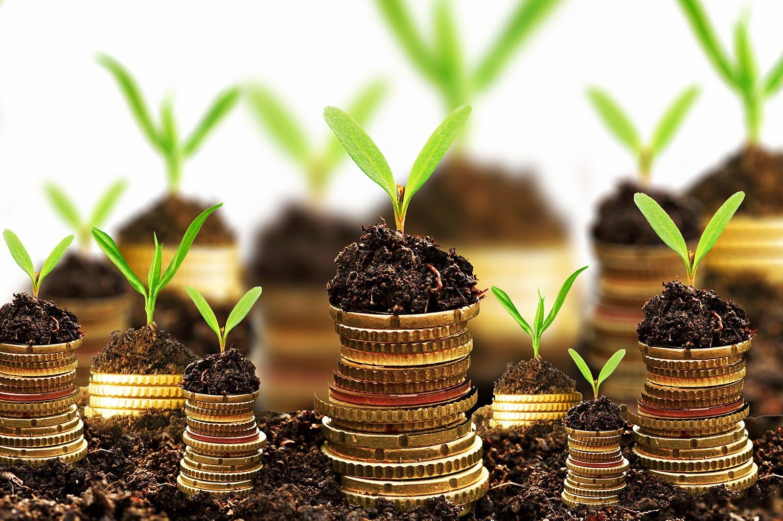 Investire e risparmiare