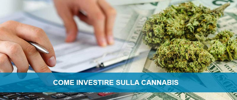 Come investire sulla Cannabis