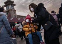 Il Virus cinese è arrivato all'uomo dai serpenti