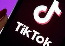 Altre indagini su Tik Tok